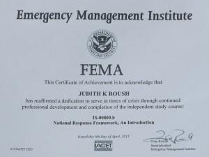 SAR - FEMA Certificate